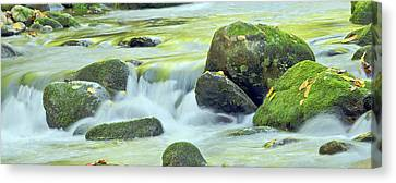 Canvas Print featuring the photograph Running Water by Wanda Krack