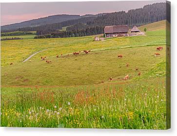 Rural Black Forest Landscape Canvas Print by Shuwen Wu