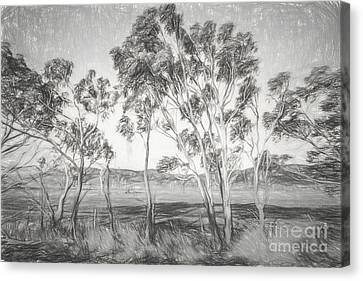 Rural Landscape Pencil Sketch Canvas Print