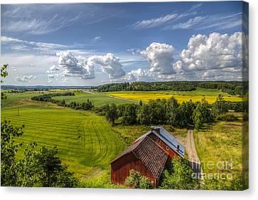 Rural Landscape Canvas Print by Veikko Suikkanen
