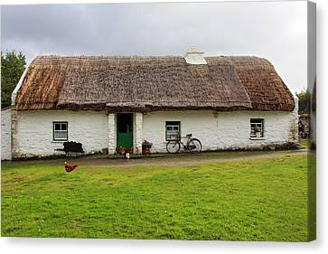 Rural Life In Ireland Canvas Print by Pierre Leclerc Photography
