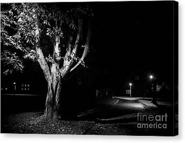 Rural Street Life At Night Canvas Print by Simon Bratt Photography LRPS