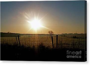 Rural Sunrise Canvas Print by Sue Stefanowicz