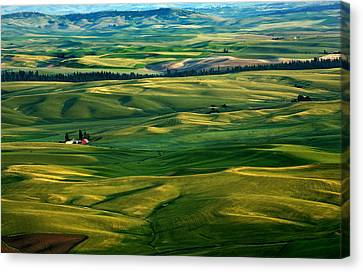 Rural Tapestry Canvas Print by Mike  Dawson