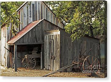 Rural Texas Canvas Print