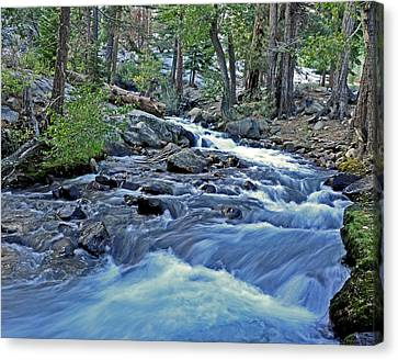 Rushing Riverbend Canvas Print