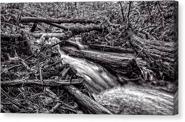 Canvas Print - Rushing Stream - Bw by Christopher Holmes