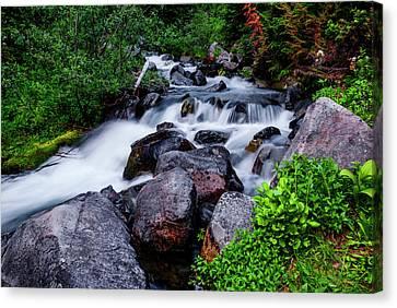 Rushing Stream In Mt Rainier National Park Canvas Print by Vishwanath Bhat