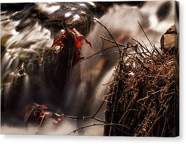 Rushing Water In Forest Park Canvas Print by Garry McMichael