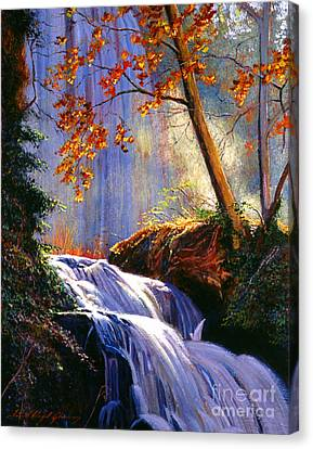 Rushing Waters Canvas Print by David Lloyd Glover