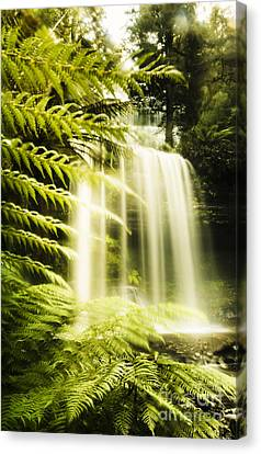 Russell Falls Background Canvas Print by Jorgo Photography - Wall Art Gallery