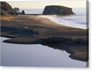Russian River And Goat Rock Canvas Print by Soli Deo Gloria Wilderness And Wildlife Photography