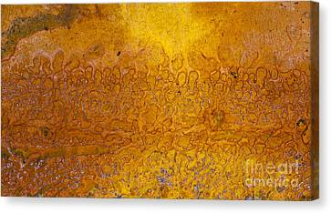 Rust Canvas Print by Tim Gainey