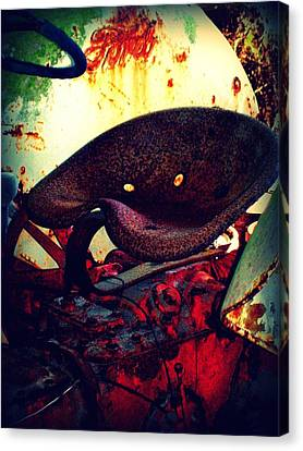 Rusted Seat Canvas Print by Dana  Oliver