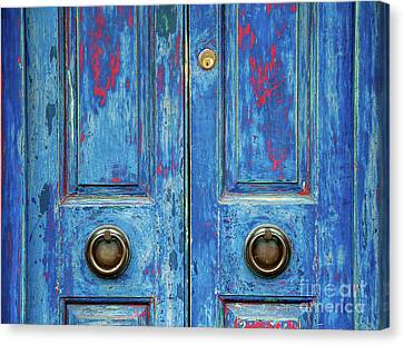 Rustic Blue Doors Canvas Print by Tim Gainey