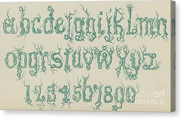 Rustic Font Canvas Print