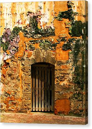 Rustic Fort Door Canvas Print by Perry Webster