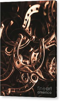 Rustic Horse Shoes Canvas Print