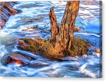 Canvas Print featuring the photograph Rustic Island, Noble Falls by Dave Catley