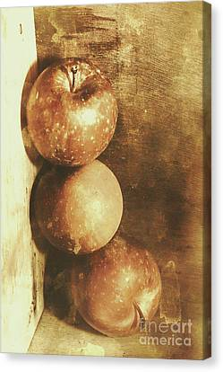 Rustic Old Apple Box Canvas Print by Jorgo Photography - Wall Art Gallery