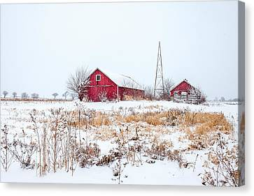 Rustic Reds Canvas Print by Todd Klassy