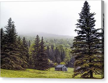 Rustic Remnant Canvas Print by Richard Bean