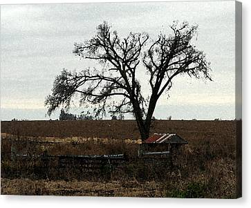Rustic Canvas Print by Rodger Mansfield