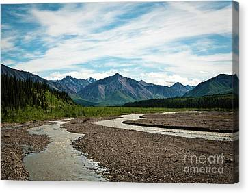 Rustic Water Canvas Print