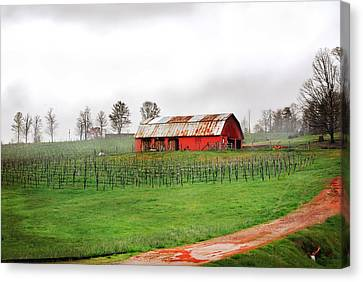 Rustic Wine Canvas Print by Robert Smith