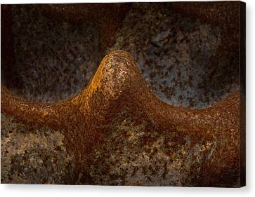 Canvas Print featuring the photograph Rustwave by WB Johnston