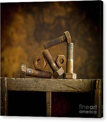 Rusty Bolt And Nuts Canvas Print