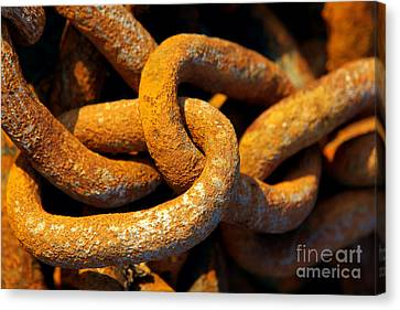 Rusty Chain Canvas Print by Carlos Caetano