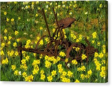 Rusty Farm Equipment Canvas Print by Garry Gay