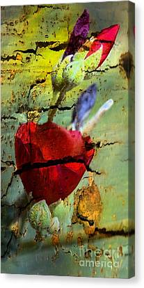 Canvas Print featuring the photograph Rusty Globe Mallow by Michael Moriarty