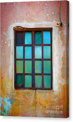 Rusty Green Window Canvas Print by Carlos Caetano
