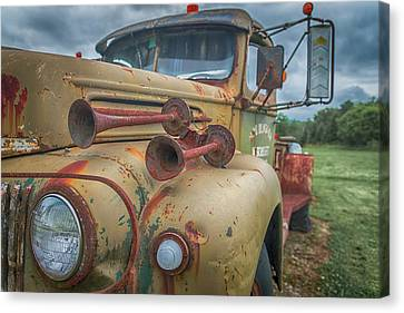 Canvas Print featuring the photograph Rusty Horns by Guy Whiteley