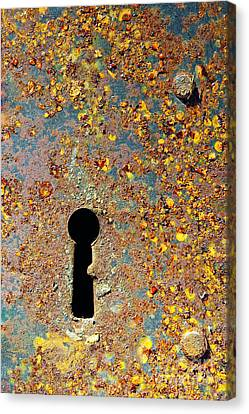 Rusty Key-hole Canvas Print by Carlos Caetano