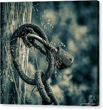 Rusty Lock And Chain Canvas Print by Ken Morris