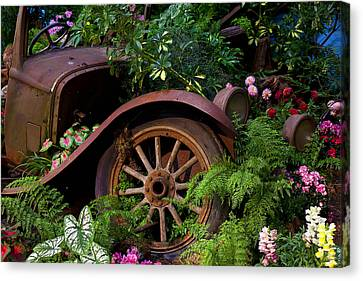 Rusty Truck In The Garden Canvas Print by Garry Gay