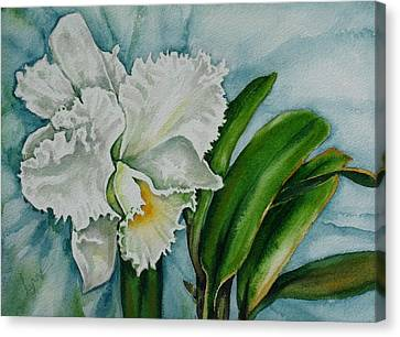 Ruth's Orchid Canvas Print
