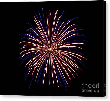 Rvr Fireworks 48 Canvas Print by Mark Dodd