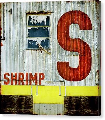 S Is For Shrimp  Canvas Print by Carol Leigh