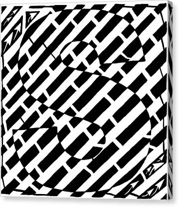 S Maze Canvas Print by Yonatan Frimer Maze Artist