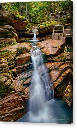 Sabbaday Falls 8896 Canvas Print by Dan Beauvais