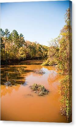 Sabine River Near Big Sandy Texas Photograph Fine Art Print 4082 Canvas Print by M K  Miller
