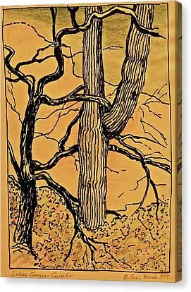 Sabino Canyon Couple - Old Gold Canvas Print
