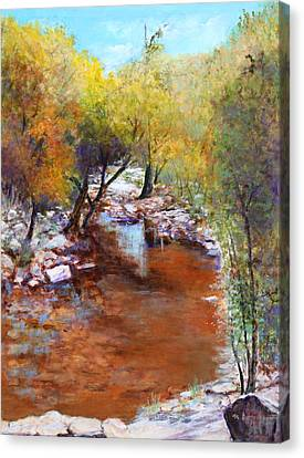 Sabino Canyon Scenes Canvas Print by M Diane Bonaparte