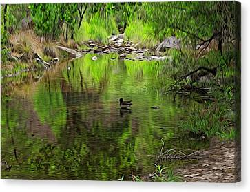 Canvas Print featuring the photograph Sabino Reflection Op53 by Mark Myhaver