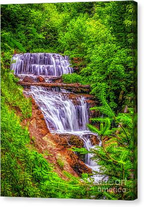 Canvas Print featuring the photograph Sable Falls by Nick Zelinsky