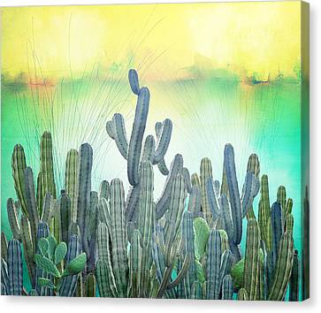 Sabress Canvas Print by Mark Ashkenazi